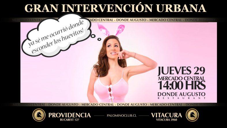Gran Intervención Urbana Club Palomino